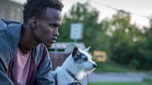 "Barkhad Abdirahman stars in ""A Stray"""